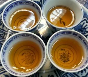 现代茶思想白鸡冠2011
